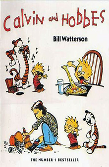 Calvin and Hobbes The Series by Bill Watterson